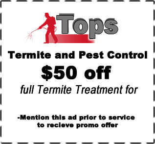 Termite Coupon, Discount, Fort Worth, Texas area / www.topspestcontrol.com